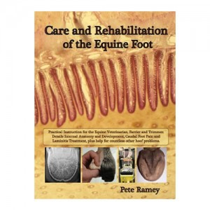 Care and Rehabilitation of the Equine Foot