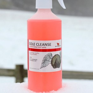 Red Horse Sole Cleanse