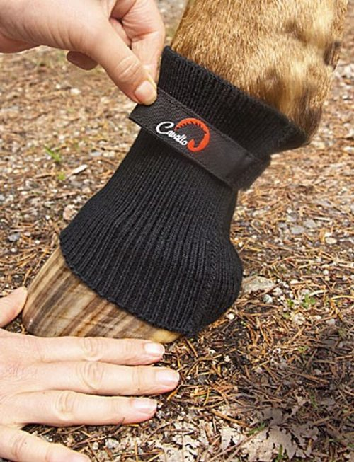 Cavallo Comfort Sleeve